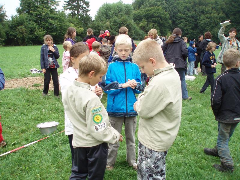 Im Turnier werden die Wölflinge in neue Gruppen eingeteilt.